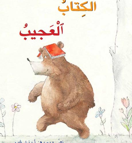 الكتاب العجيب